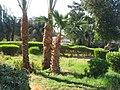 Egypt, Hurghada, 2014. - panoramio (30).jpg