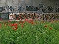 El graffiti y las amapolas (22913640669).jpg