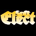 ElectSoft.png