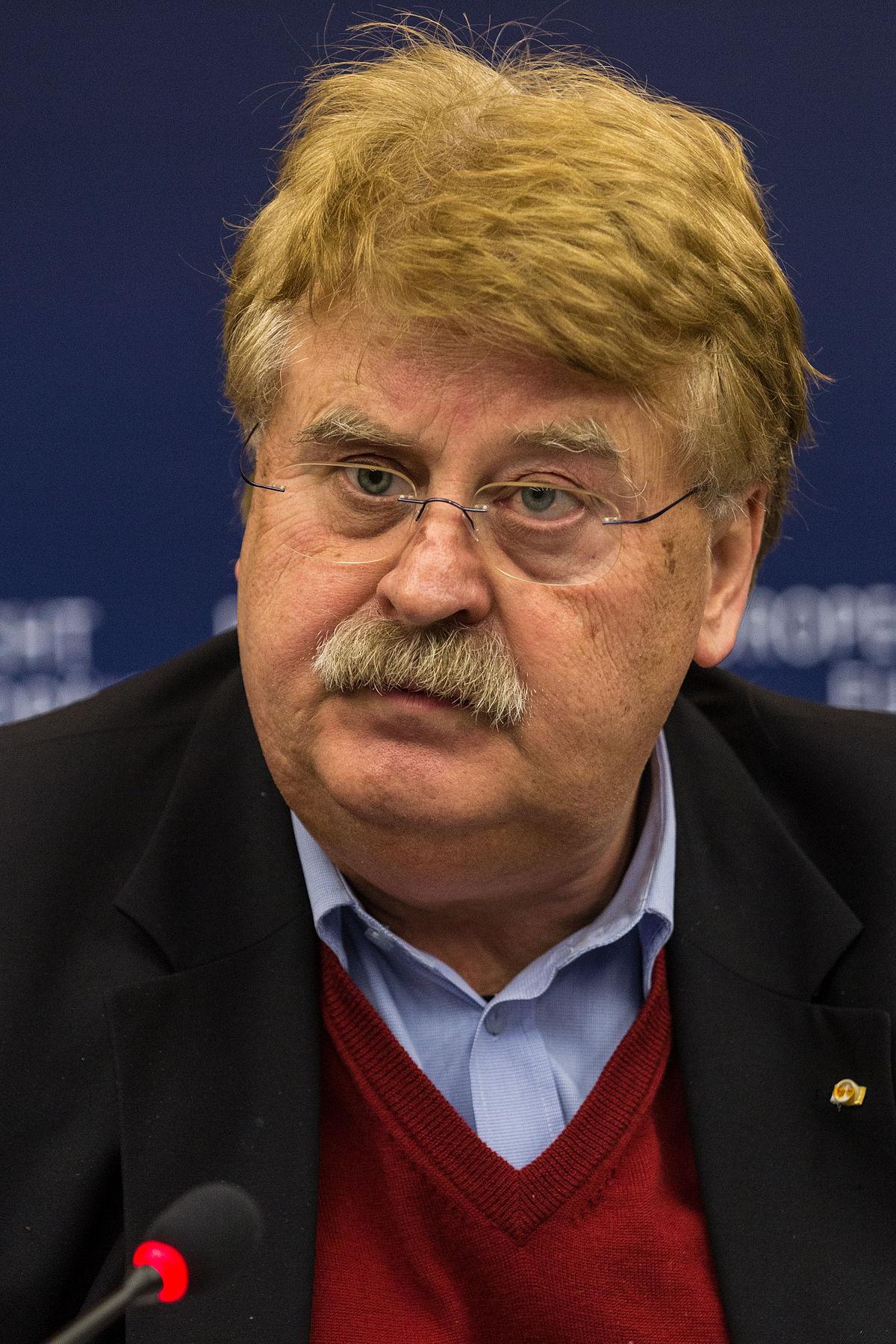 Elmar Brok Wikipedia