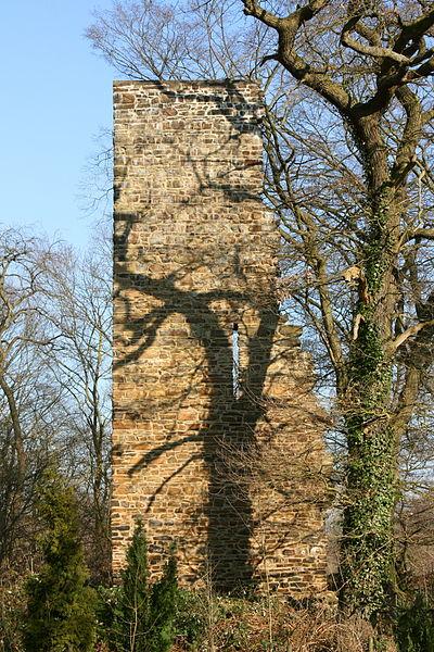 Руины крепости Люттельнау. Свободное изображение Викимедии, автор фото Frank Vincentz
