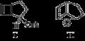 Exo-2-bicyclohept-6-enyl tosylate (I) and Unrearranged bridged cation (II).png