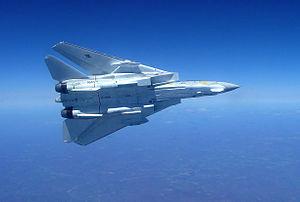 F-14B VF-11 2005 Left Bank.jpg