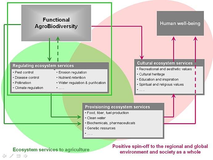 Functional Agrobiodiversity
