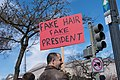 Fake Hair Fake President, March For Our Lives, Washington DC.jpg