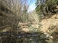 Fall Run Park in Shaler Township, late winter - 23.jpeg