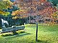 Fall at McLaren Falls (5462163827).jpg