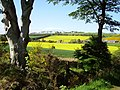 Farmland, Press Mains - geograph.org.uk - 176026.jpg