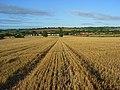 Farmland, Saunderton - geograph.org.uk - 957320.jpg