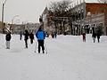 Feb 2013 blizzard 5880.JPG