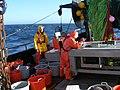 Fish0224 - Flickr - NOAA Photo Library.jpg