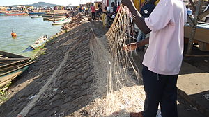 Fishing in Uganda - A fisherman preparing a net for fishing at Gaba landing site, Kampala.