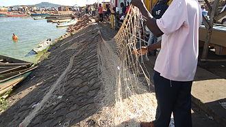 Fishing in Uganda - A fisherman preparing a net for fishing at Gaba landing site, Kampala.