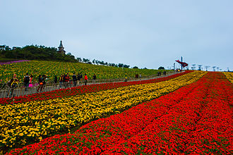 Yantian District - Image: Flower Field OCT East