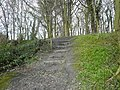 Following the footpath to the top of David's Hill - geograph.org.uk - 726573.jpg