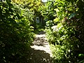 Footpath through the Mill garden. - panoramio.jpg