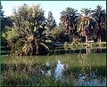 Ford Park, Pond and Palms, Redlands, CA 7-12 (7747206884).jpg
