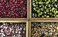 Four bean varieties in a gene bank.jpg