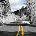 Fox Hollow Road, Eugene crop.jpg