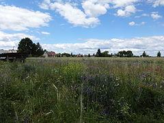 Fredersdorf Brandenburger Landpartie Juni 2014 02.JPG