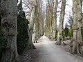 Friedhof Kappeln - panoramio.jpg
