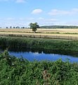 From the island at Wansford Lock - August 2013 - panoramio.jpg