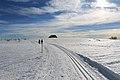 Fruitières de Nyon in winter - panoramio (28).jpg