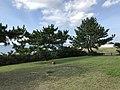 Fukuyoshi Shiosai Park 20170701-4.jpg