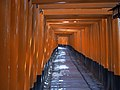 Fushimi Inari shrine Senbon(Thousand) torii , 伏見稲荷大社 千本鳥居 - panoramio.jpg