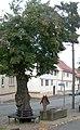 GTH Gräfenhain 06a.jpg