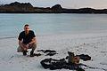 Galapagos Inseln, Ecuador (13928686694).jpg