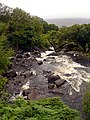Galway's River - geograph.org.uk - 531673.jpg