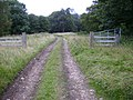 Gateway in Seamer Howl - geograph.org.uk - 532965.jpg