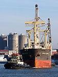 Genius Star VIII (ship, 2007) - IMO 9379868 & Tug 31, Port of Antwerp pic1.JPG