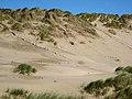 Giant sand dunes south of Strandhill - geograph.org.uk - 978999.jpg