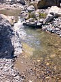 Gimello - creek - 17.jpg