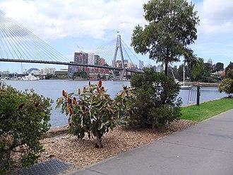 Glebe Point - Image: Glebe Foreshore path