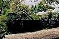 Glebe House - Grounds - geograph.org.uk - 1328803.jpg