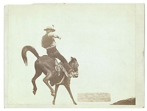 ";Original title: ""Bucking Bronco."" N..."