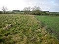 Grassy corner - geograph.org.uk - 1078673.jpg