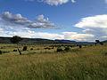 Grassy valley (14026564123).jpg