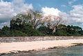 Grave island (3078583665).jpg
