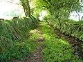 Green Lane near Wrangaton Moor Gate - geograph.org.uk - 169707.jpg