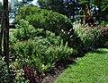 Green Spring Gardens in September (22802658601).jpg