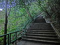 HK 北角 North Point 香花徑 Aroma Walk rain 26 outside stairs Dec-2013.JPG