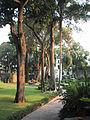 Hacienda Cocoyoc 2003-003.JPG