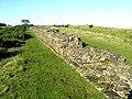 Hadrian's Wall - geograph.org.uk - 1017680.jpg