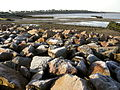 Hampton-on-Sea 016.jpg