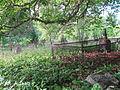 Harju-Madise vana kalmistu, 1.JPG