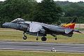 Harrier (5169291152).jpg
